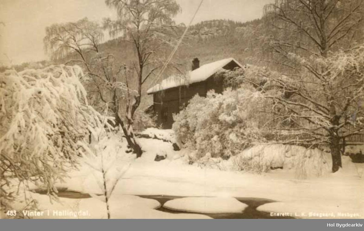 Landskap, Rukkedøla, vinter, bustadhus, bygning, snøbusker,
