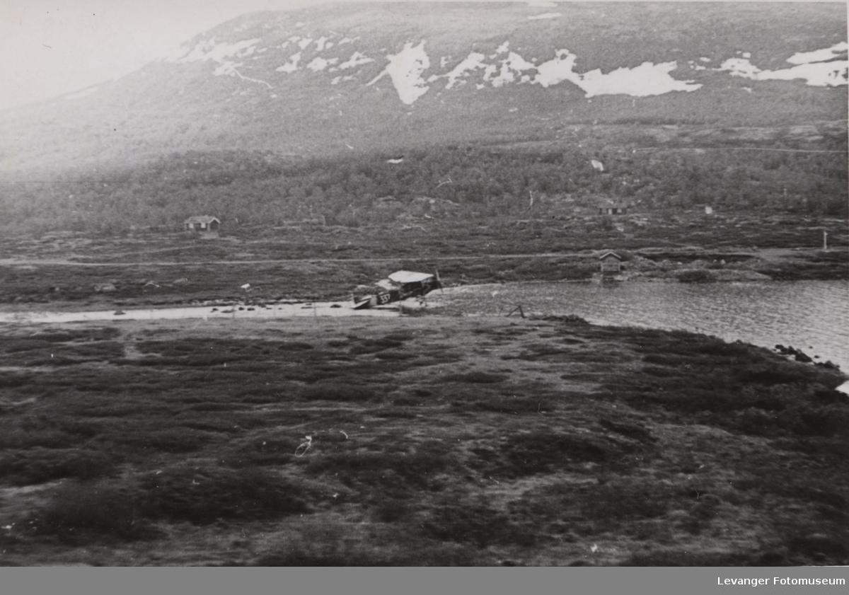 Norske fokkere ved Vålåsjøen på Dovre fjell.