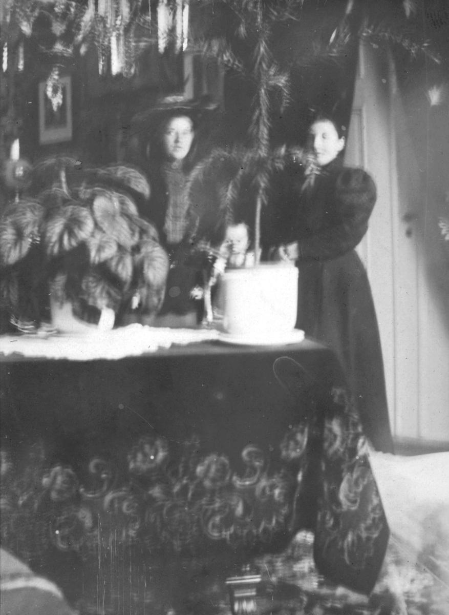 Søstrene Ellen? Ruth Aanstad og Magalene Cecilie Evanger fotografert i bestestuen. Begge kvinnene er kledt i mørke klær. Den ene har en hatt på hodet. Det store bordet er dekket med en stor mørk duk, med mønster, og en mindre hvit oppå. Flere planter står på bordet. I taket henger det en lysekrone. Det henger bilder på veggen i bakgrunnen. I tekst til bildet står det at dette er Solveig Sannes sitt første bardomshjem