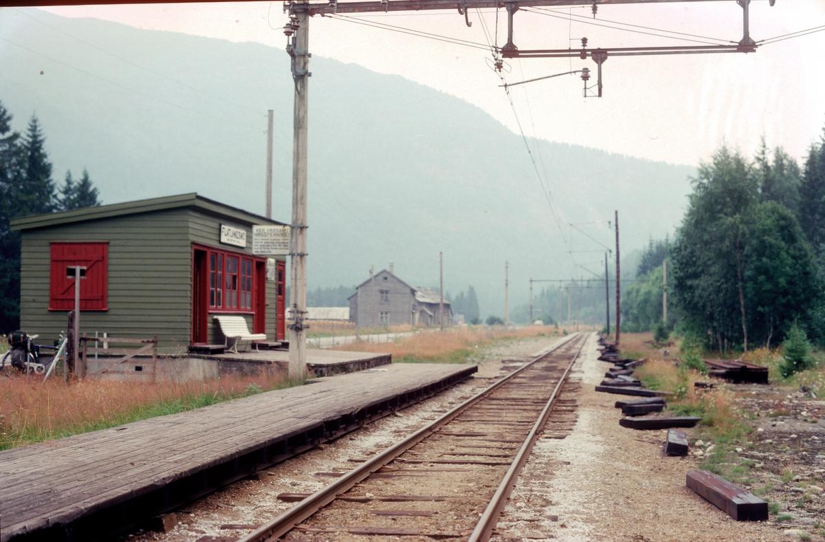 Hardangerbana. Flatlandsmo stasjon.