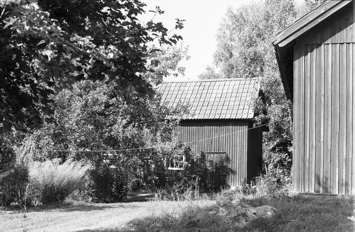 Uthus, Tibble 5:20, Rasbokils socken, Uppland 1982