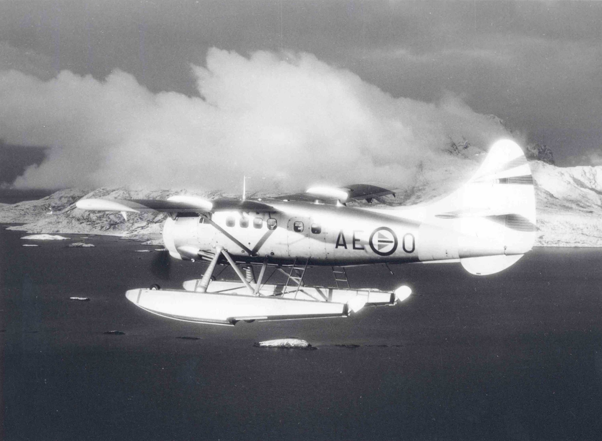 Ett fly i luften.  DHC- 3 Otter   O-AE.