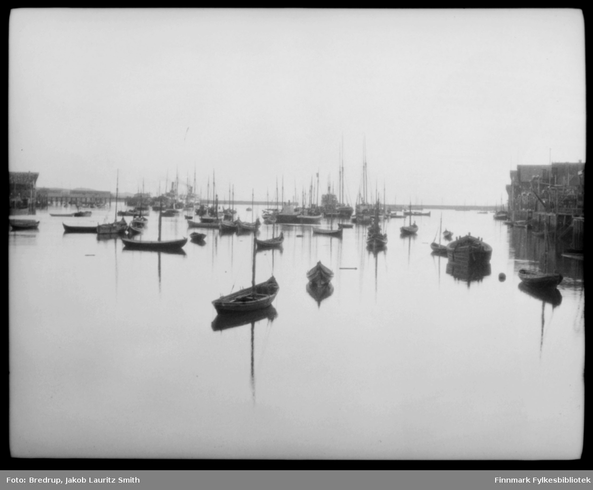 Bilde fra havna i Vardø.  Havet er blikkstille, og små fiskebåter og større fartøyer i massevis ligger forankret.  Vi ser kaier og fiskebruk i bakgrunnen.