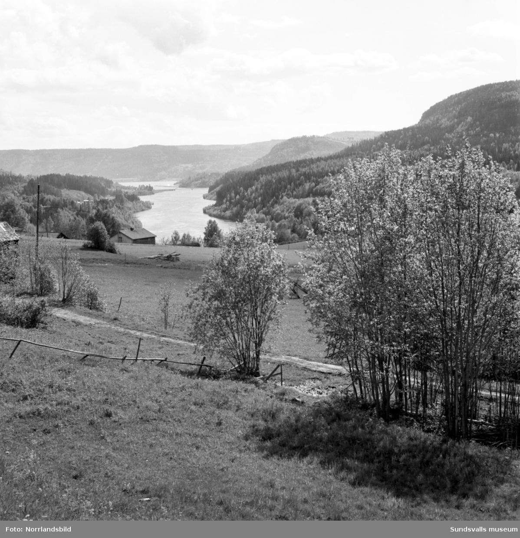 Vackra vyer över Indalsälven , troligen i trakterna kring Liden och Järkvissle.