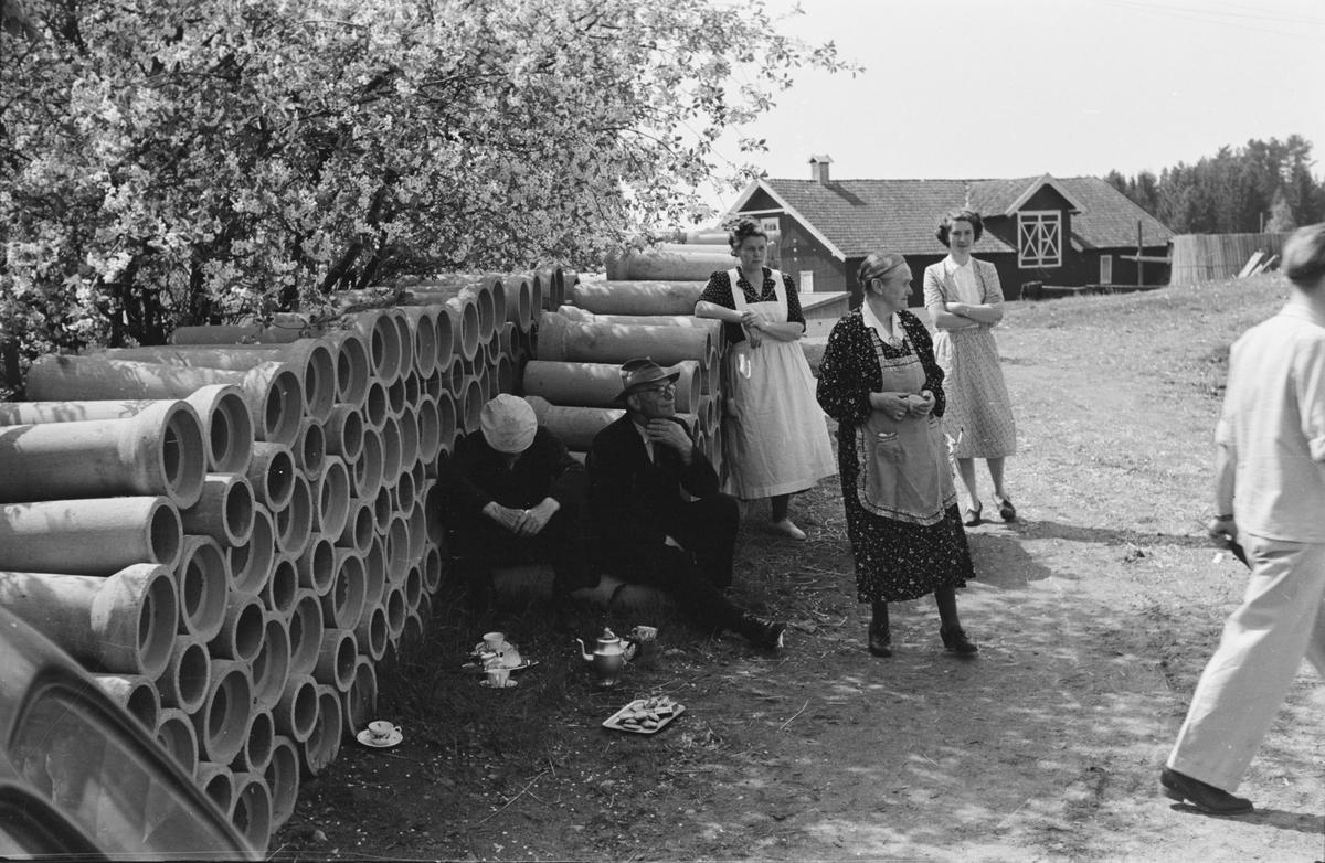 Fra billøp i Elverum. 1954. Publikum.
