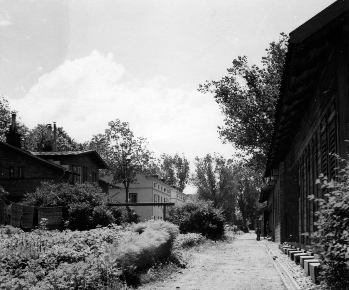 """En trädgård mellan bostadshus och uthus vid """"Bostäderna"""" i kvarteret Jägmästaren, Jönköping."""