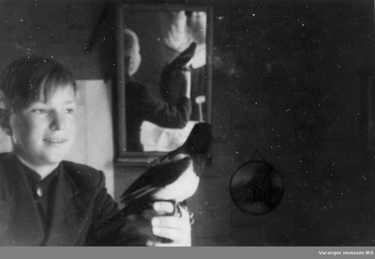 Tam skjære hos familien Riesto med en av Riestoguttene. Bildet er tatt i familiens hus i Vadsø før storbombingen i august 1944.