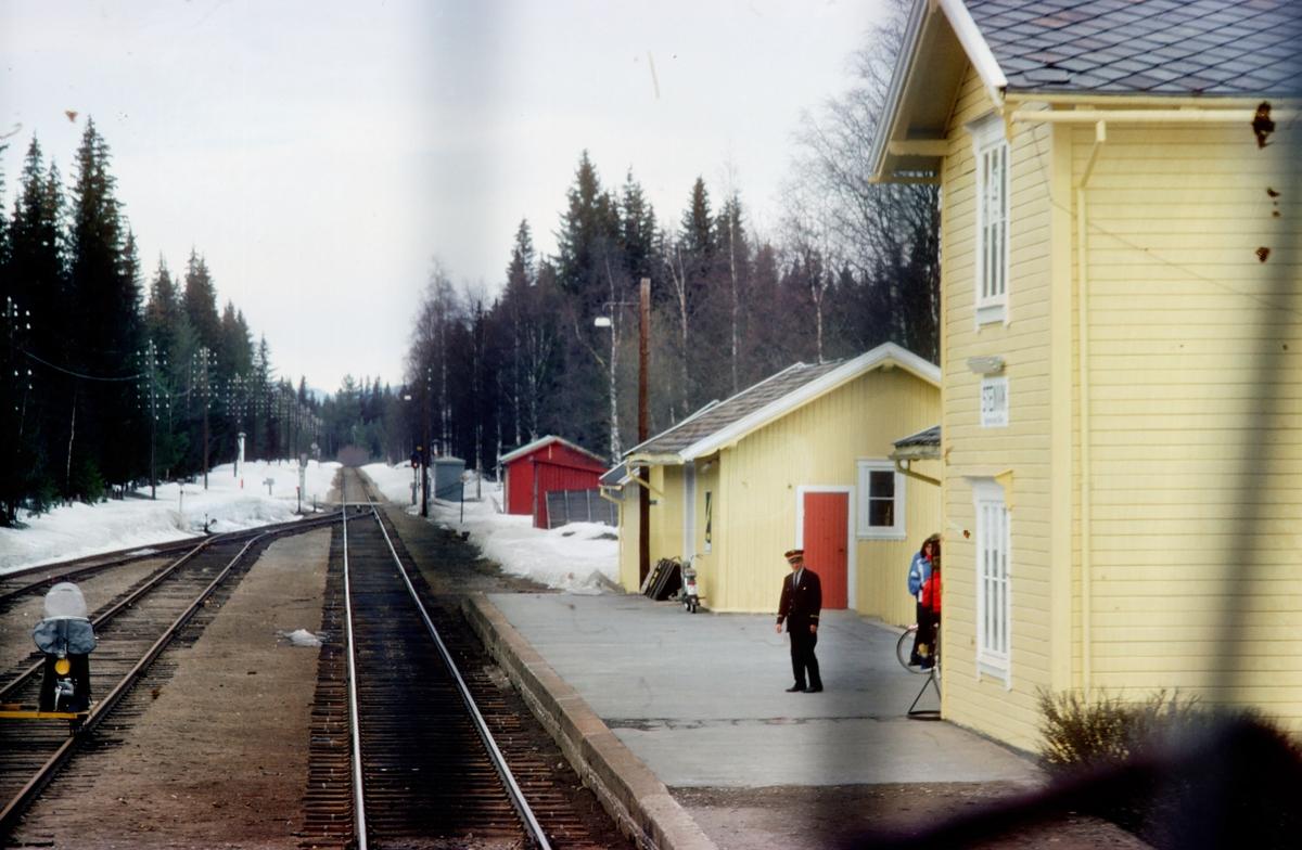 Steinvik stasjon. Dagtoget Oslo Ø - Trondheim over Røros, hurtigtog 301, kjører inn.