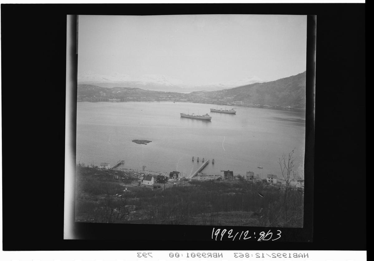 Narvik havn Malmbåter Ankenes landgang