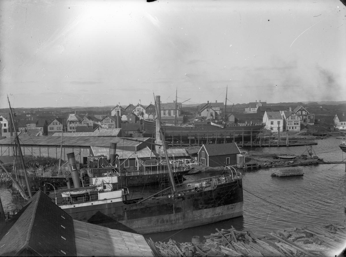 Haugesunds slip med flere dampskip ankret opp. Trehusbebyggelse i bakgrunnnen.