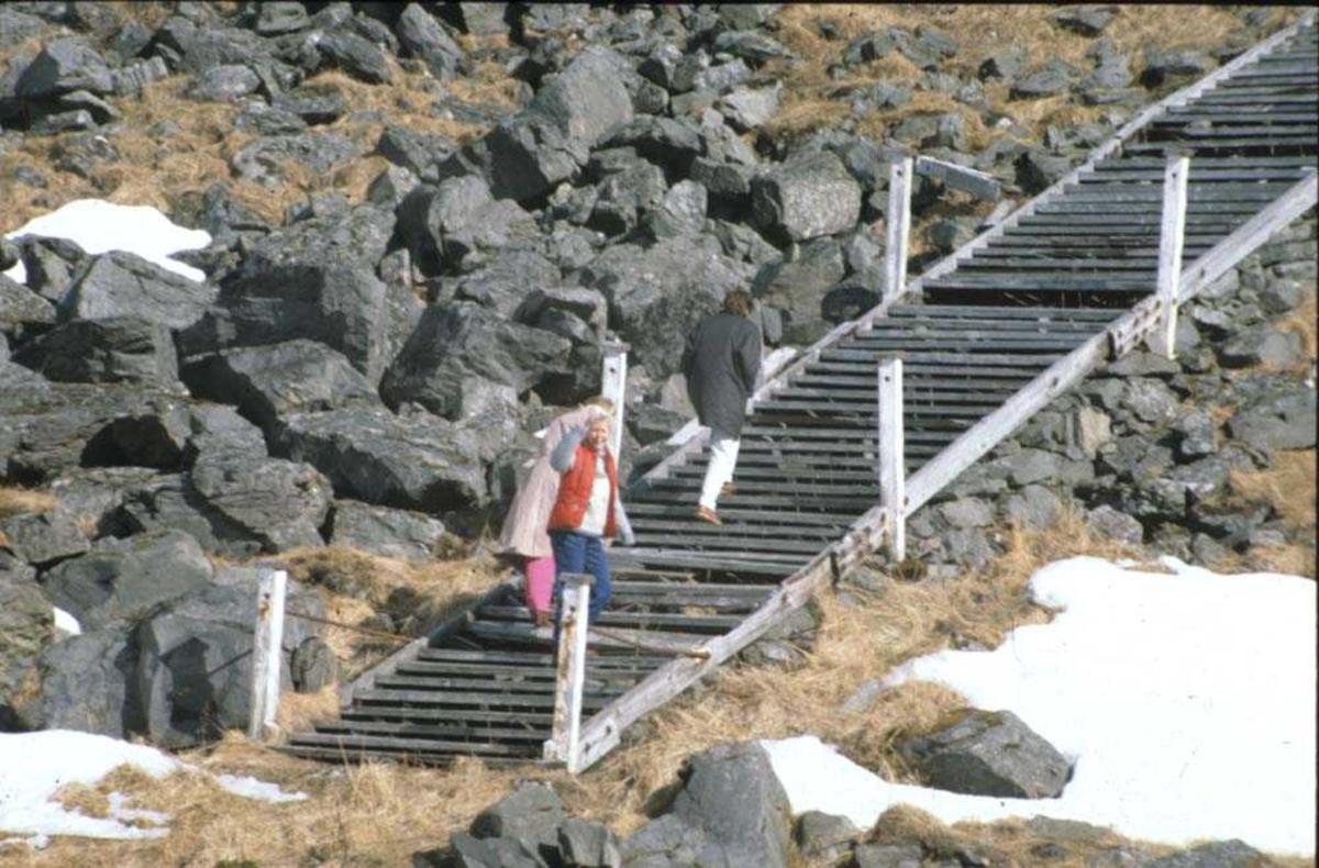 Landskap. Nordkapp. Denne trapp fører opp til Nordkapp-platået.