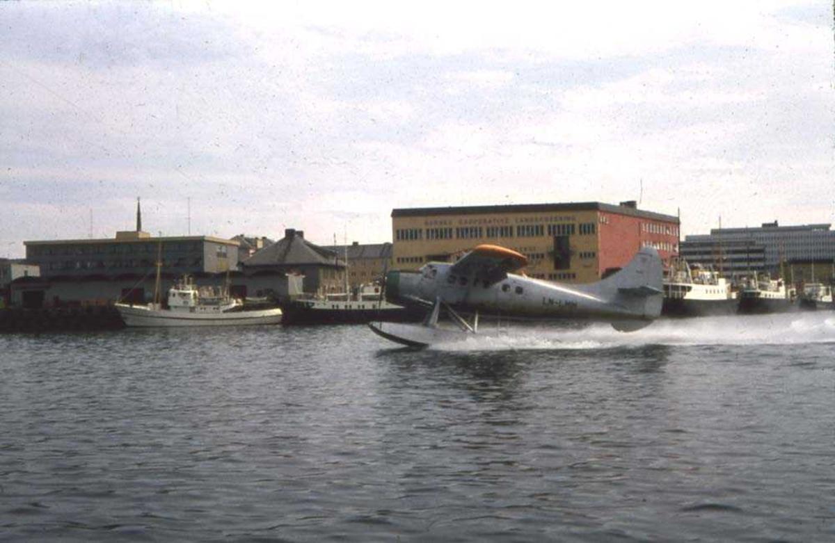 Bodø havn. Et sjøfly, LN-LMM, DHC3 Otter fra Widerøe, overtatt fra forsvaret og ennå i forsvarets farver, klar for avgang Bodø havn.