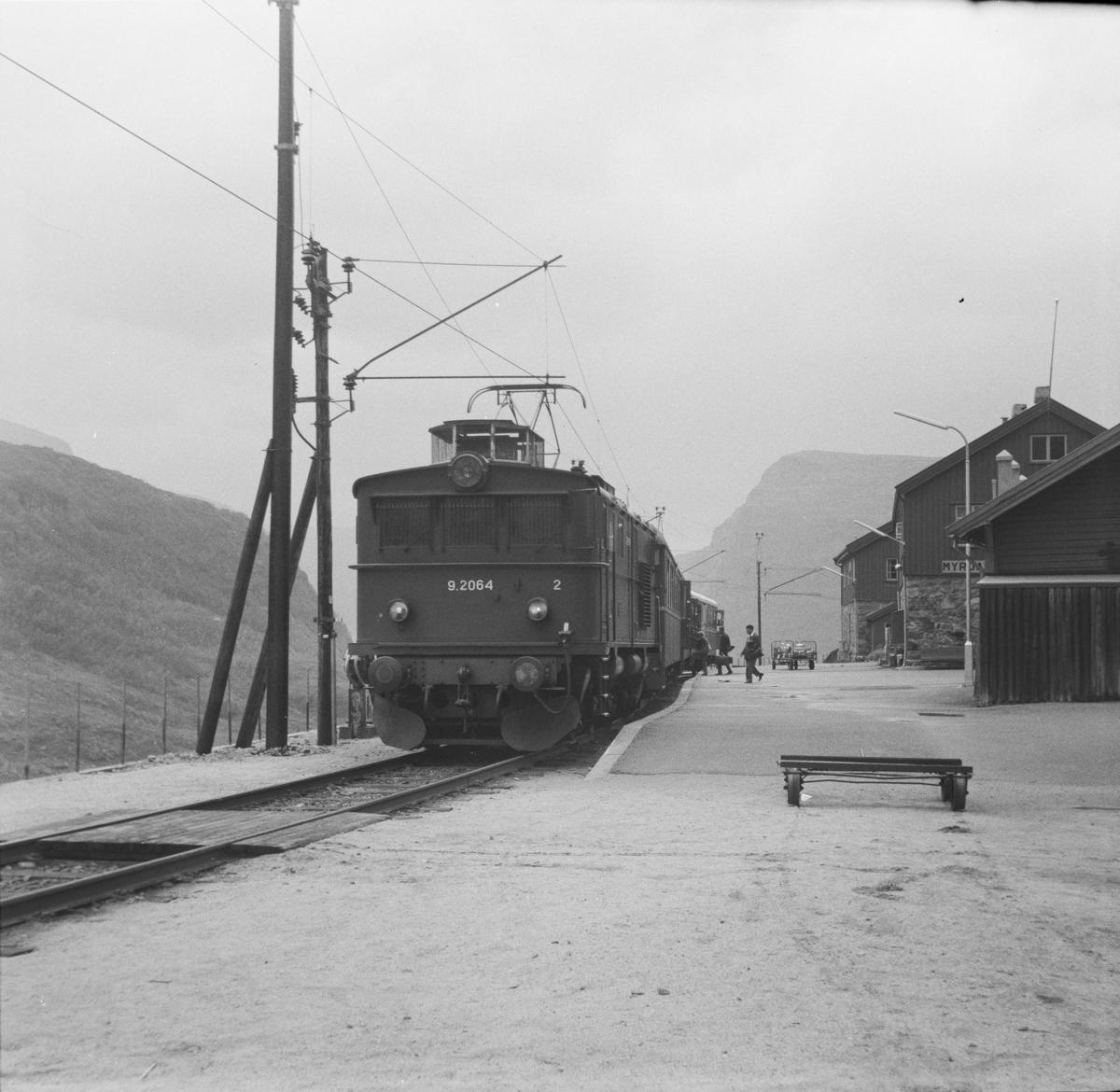 Tog fra står ved plattformen på Myrdal stasjon.