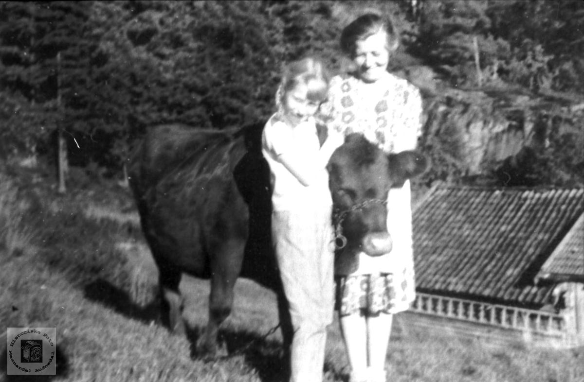 """""""Dyregod"""". Ingeborg Fredriksen og Ragna Sveinall."""