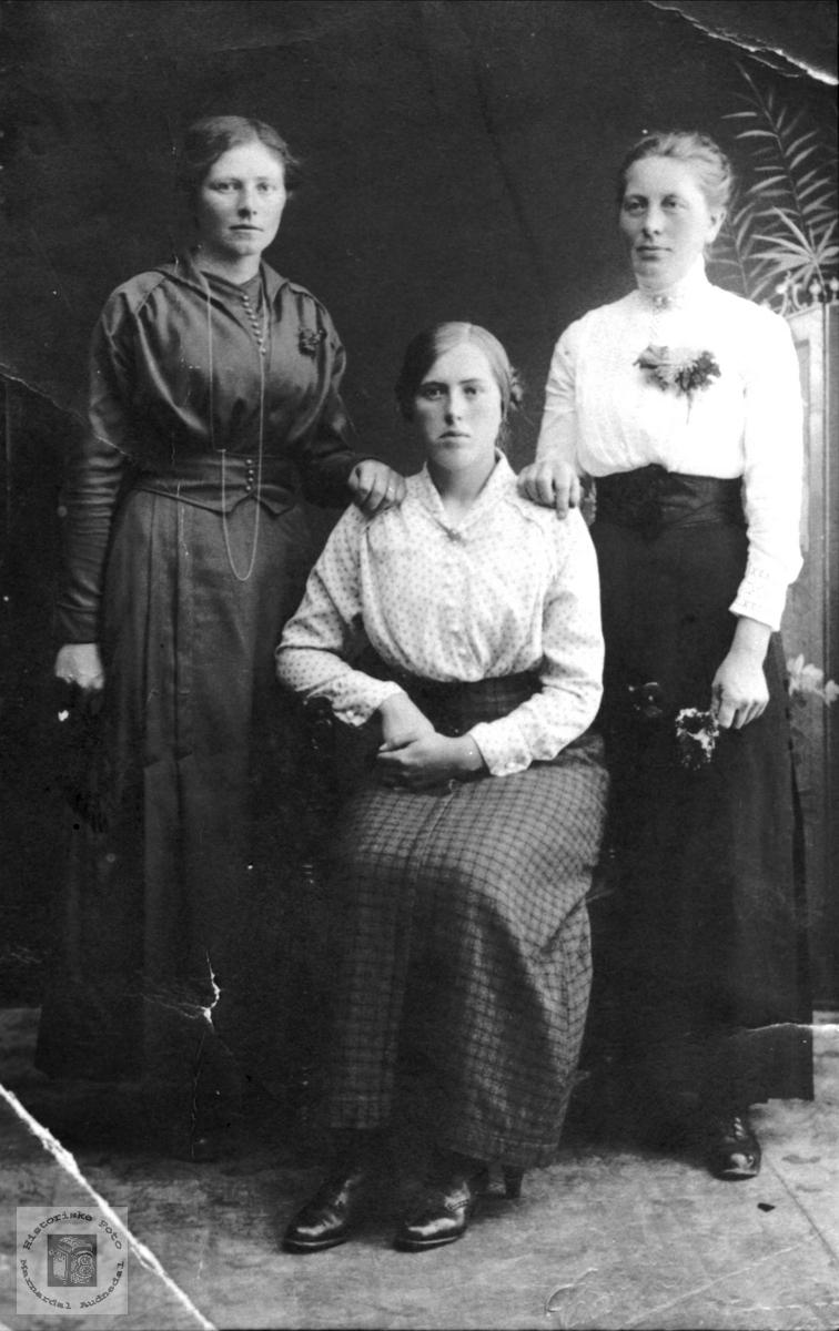 Tre damer. Fjellestad, Laudal.