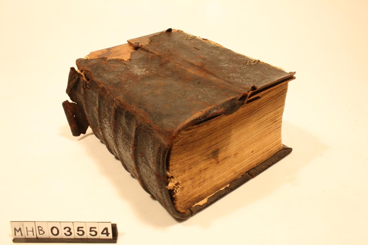 Tysk. Lutherutgava. Folio. Billedutgåve. Det er treplater på innsiden av læromslaget foran og bak.