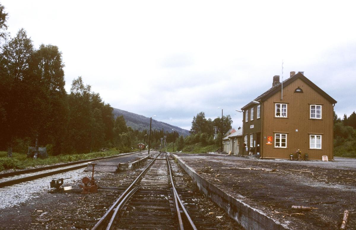 Formofoss stasjon. Spor 1 ble nyttet til opplasting av tømmer.