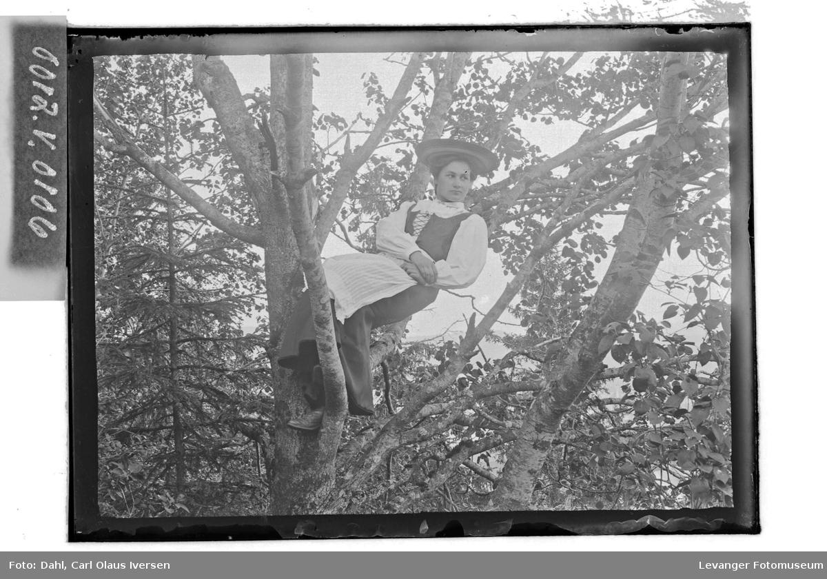 Kvinne oppe i et tre