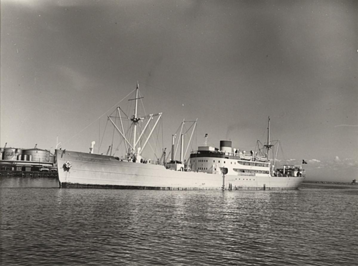 """Foto i svartvitt visande lastmotorfartyget """"GULLMAREN"""" i Köpenhamn under april månad 1954."""
