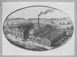 A.F. Carlssons skofabrik.