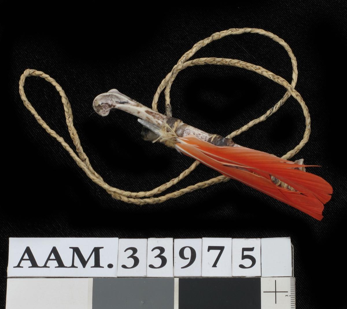 Fetisjkopi laget av et leggbein av en fugl - trolig påfugl - med røde fjær fra en grå papegøye, bundet sammen festet til en snor av flettet bast.