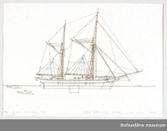 Montering/ram: Passepartout av tunn grå kartong; 55 x 66 cm, Nyzeeländsk segelpråm, scowschooner, flatbottnad och med centerbord. Övrig historik se UM72.26.001.
