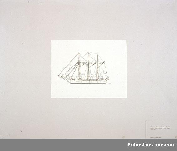 Montering/ram: Passepartout av tunn grå kartong; 55 x 66 cm, Tremastade slätskonaren Dagny av Djupekås, byggd i Ystad 1926. Sista i Sverige byggda segelfartyget. Övrig historik se UM72.26.001.