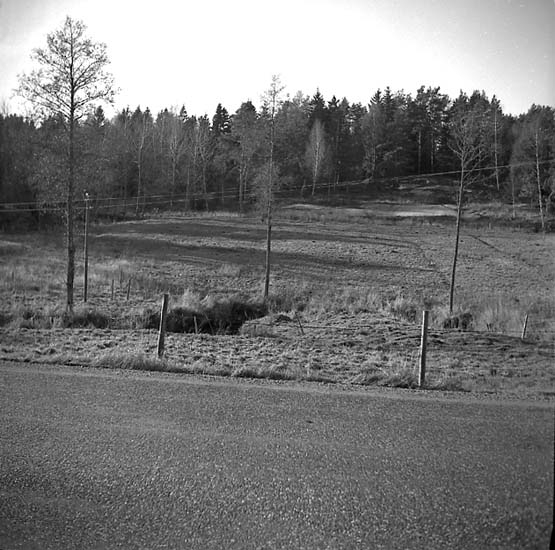 Tanum socken. Vitlycke, hällristning. Panoramabild.