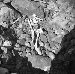 Döingeröse på Bringebärsholmen