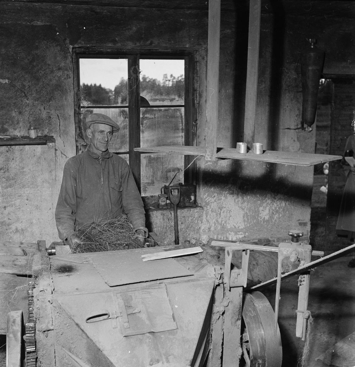 """Lantbrukare Konrad Carlsson med sin """"specialmaskin"""" för bråkning av lin"""