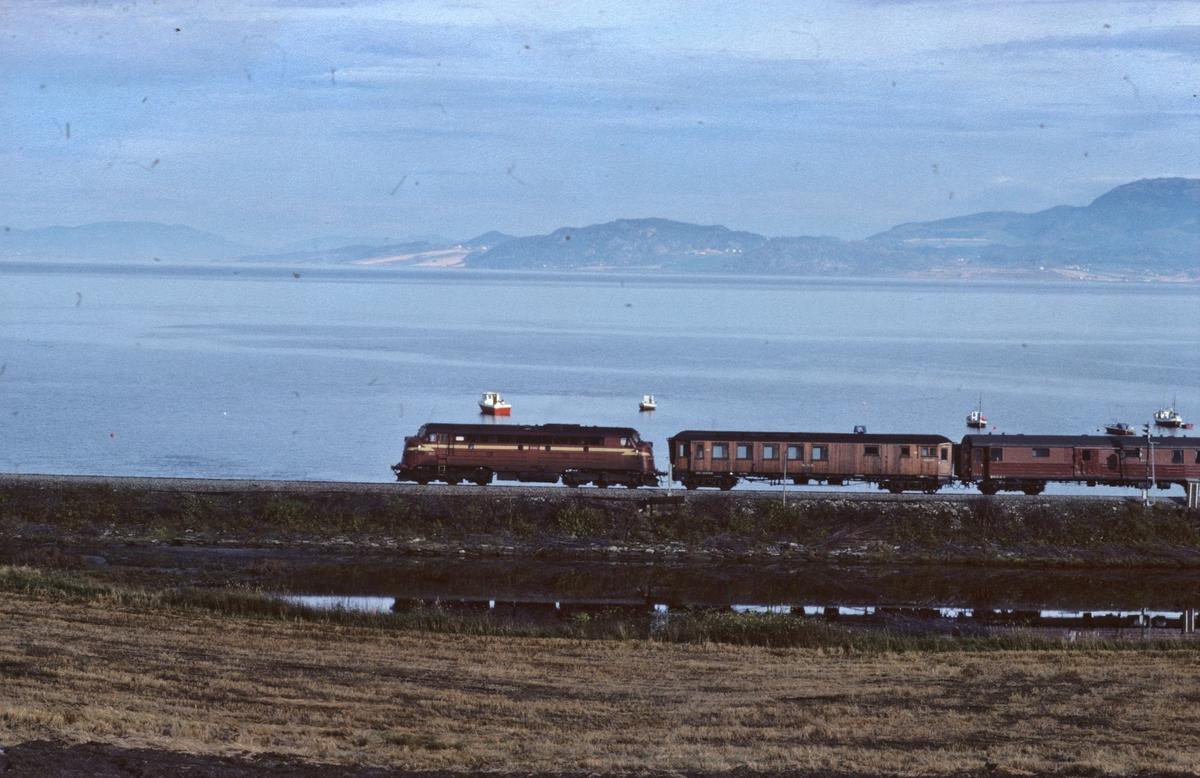 NSB persontog 424, Stockholm - Trondheim, med dieselelektrisk lokomotiv Di 3. Konduktørvognen med teak-kledning gikk fast i dette toget på lørdager, retur fra nattens godstog.