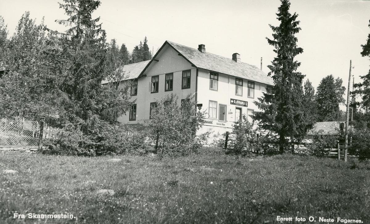 Landhandelen til O. Jøranli, Skammestein i Øystre Slidre