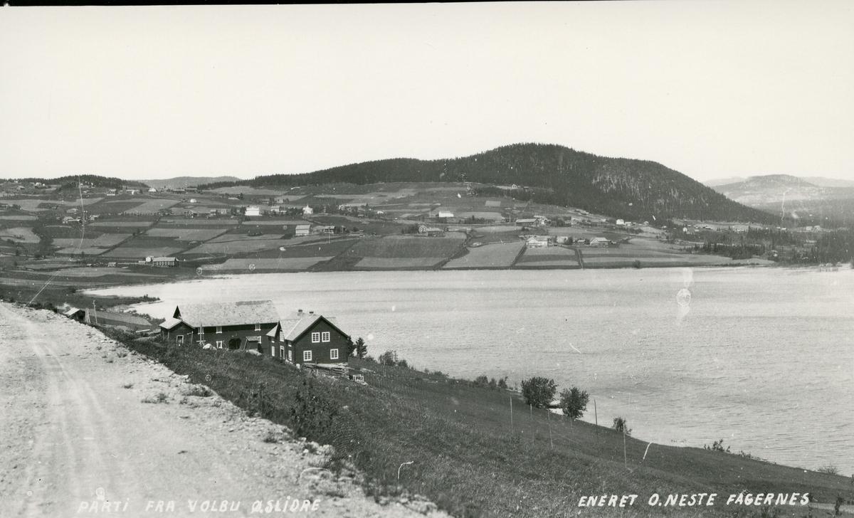Utsikt fra vestsida mot Volbu og Volbufjorden