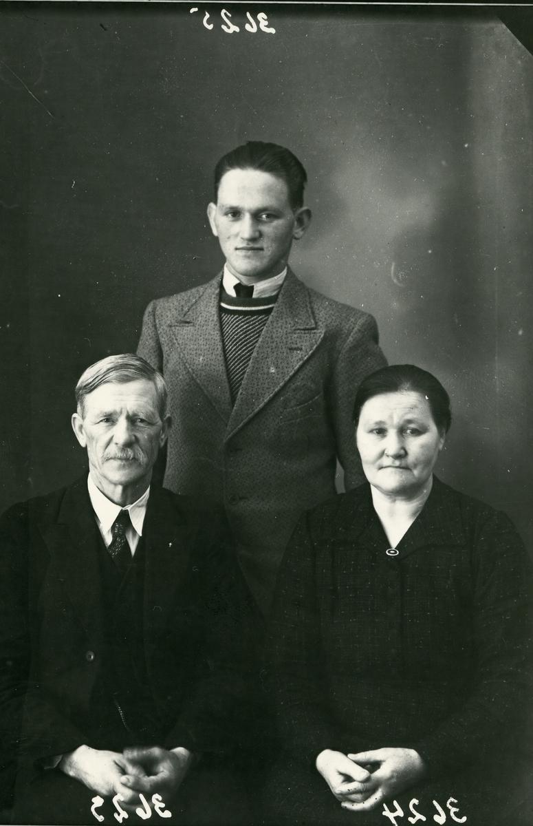 Familie - mor, far og sønn, lerretbakgrunn