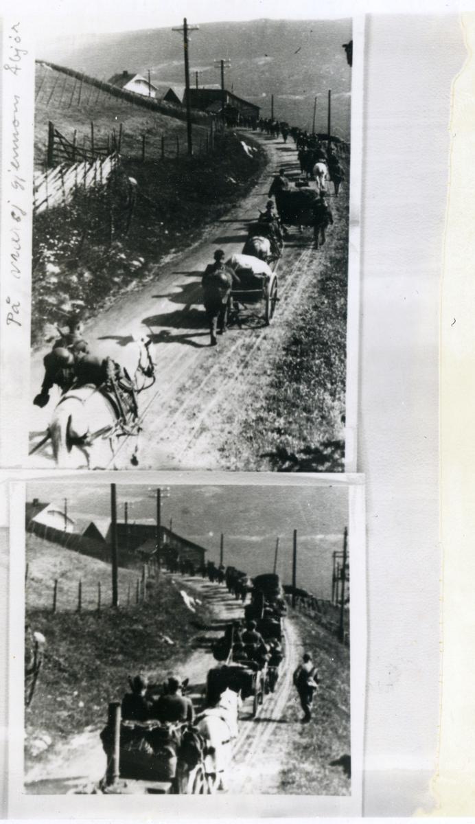 To motiv med tyske soldatar på veg frå Gol til Valdres ca. 30. april. Her på veg gjennom Åbjør.