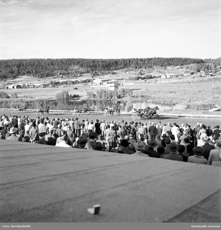 Jämtland vann travkampen på Bergsåker.