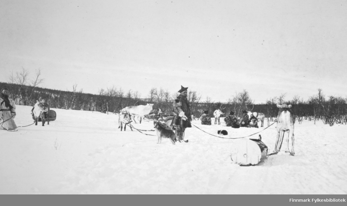 En samisk gruppe men og deres reinraide under en hvil i Polmak. Foto: ukjent.