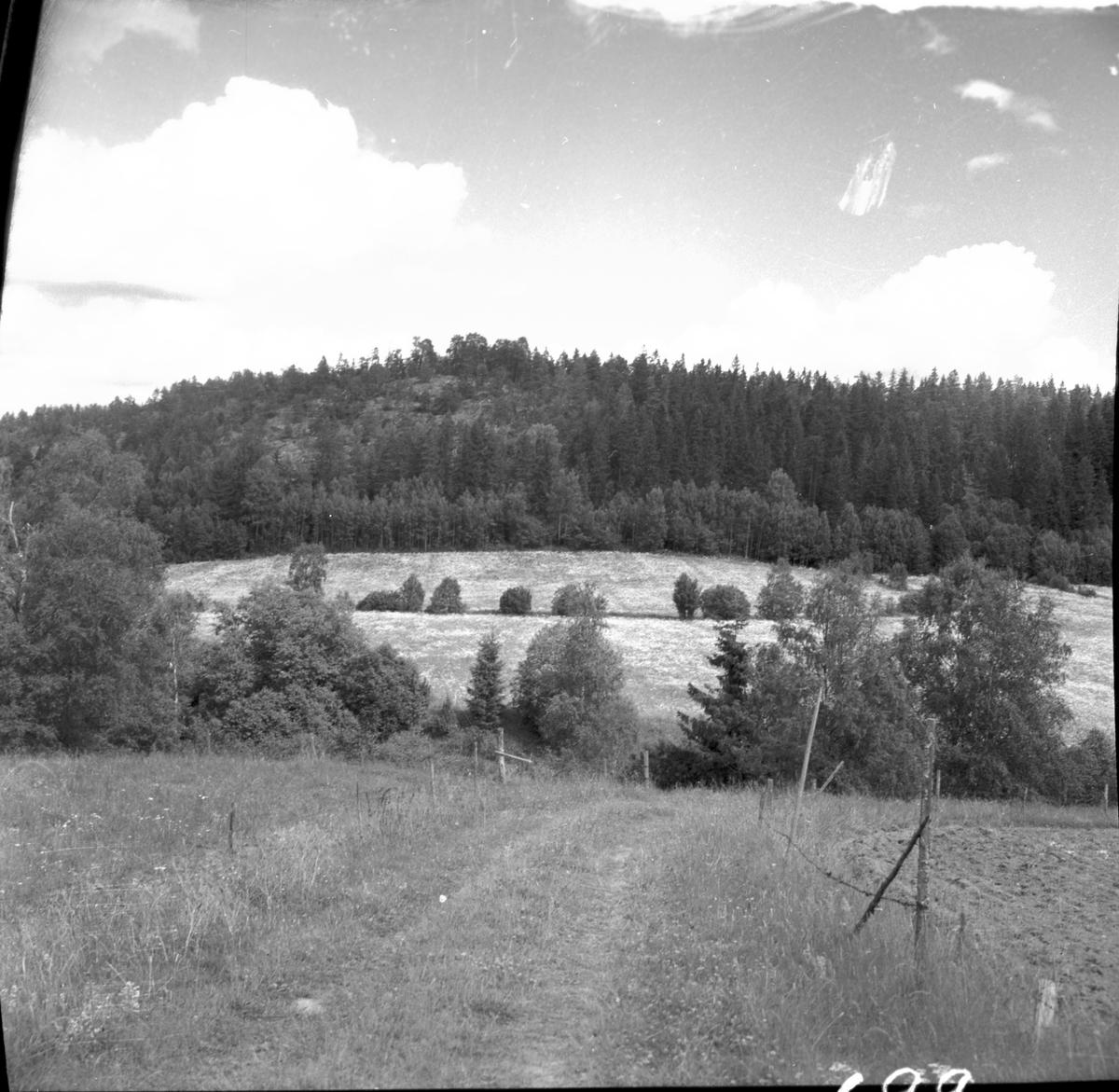 Berget med fornborgen sett från västsydväst  Steneby