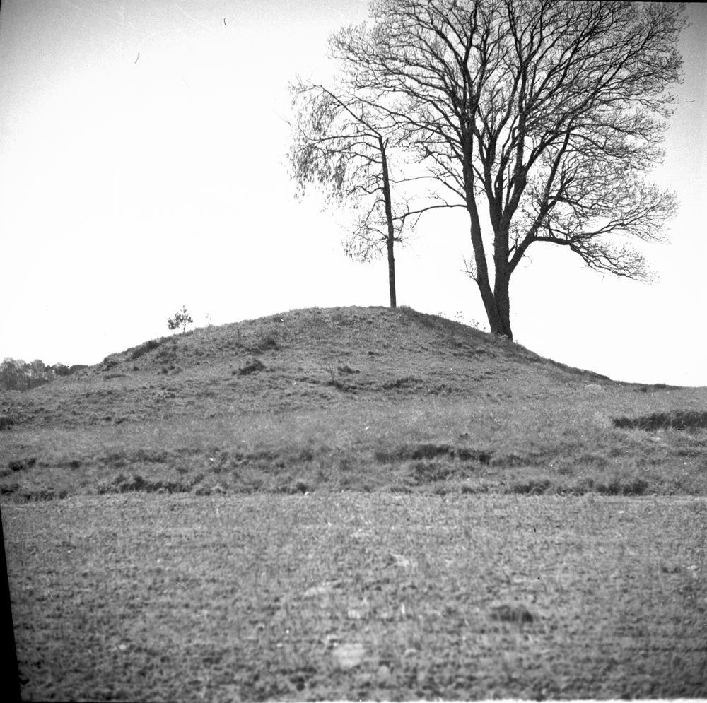 Drottning Disas grav vid Vittene Lena. Från norr  b. från söder (inv. mått 2,25 x 8,50 m)