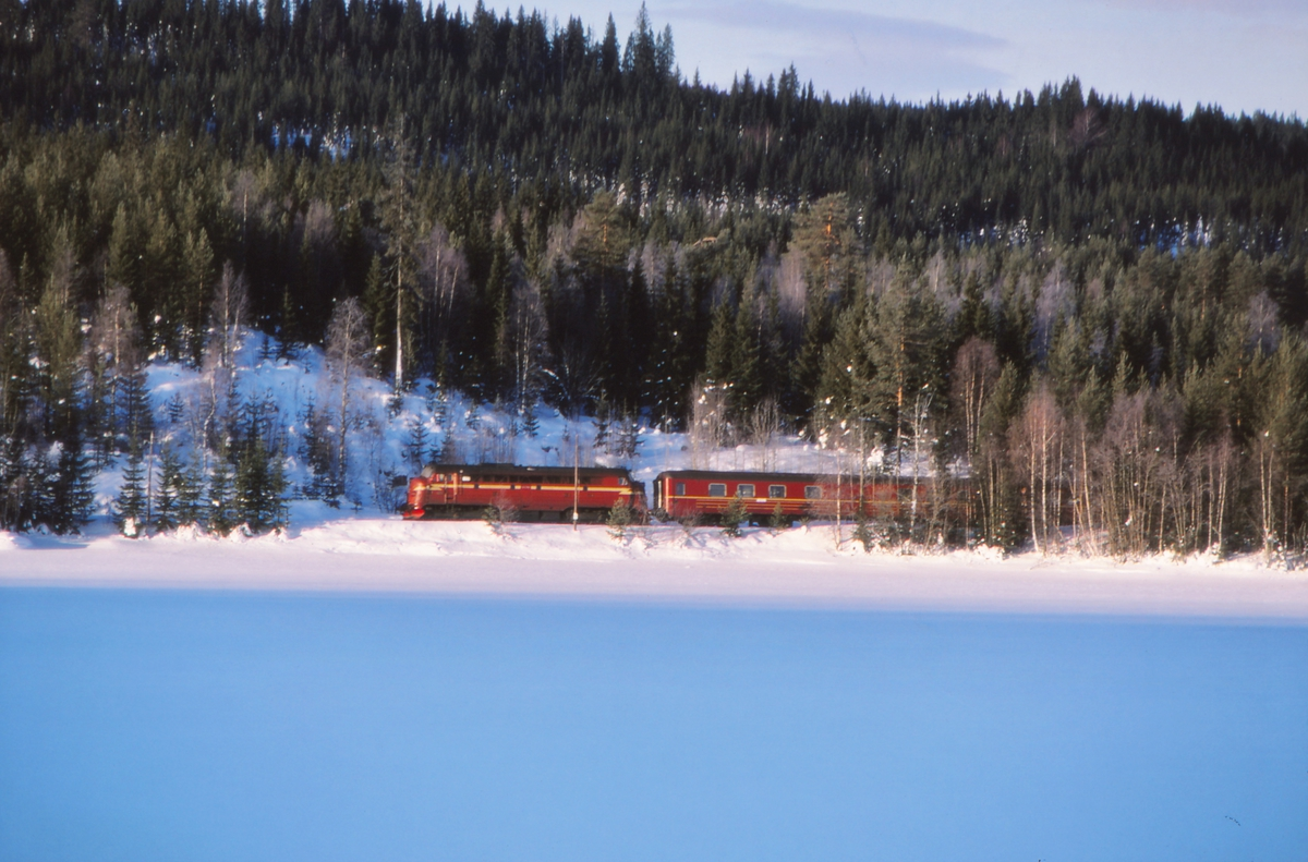Valdresbanen. Persontog 284 (Fagernes - Oslo S) ved Trevatn.