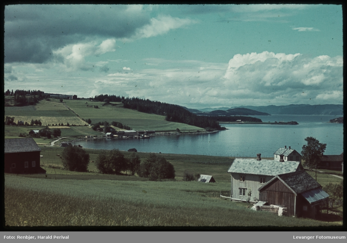 Skogn med utsikt mot Holsand og Trondheimsfjorden