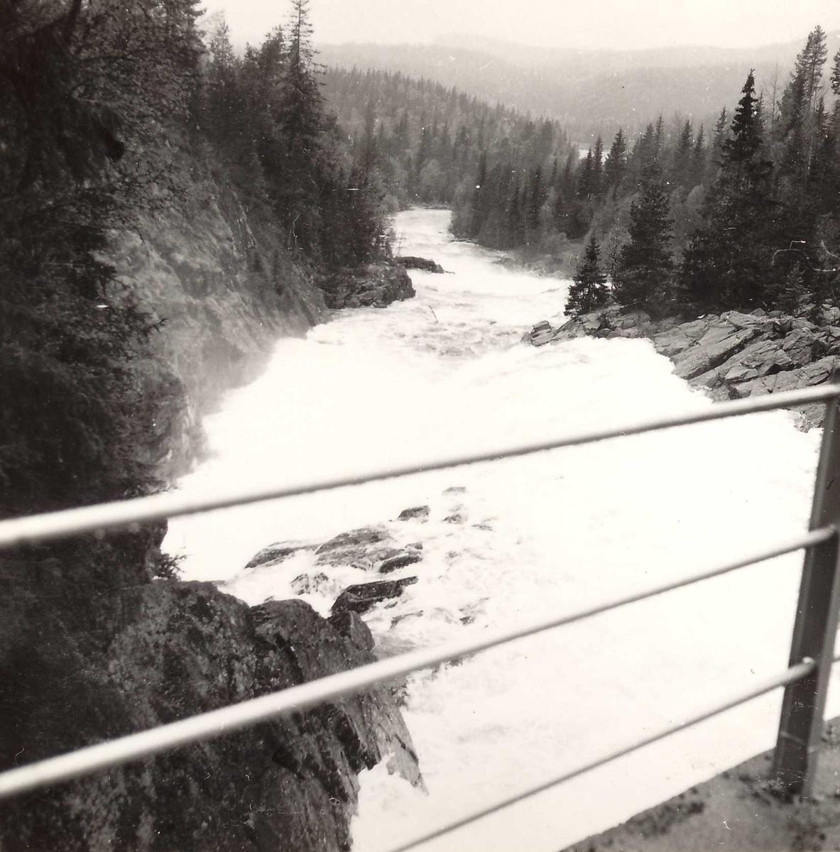 Vågi Dam 3, 05.06.61