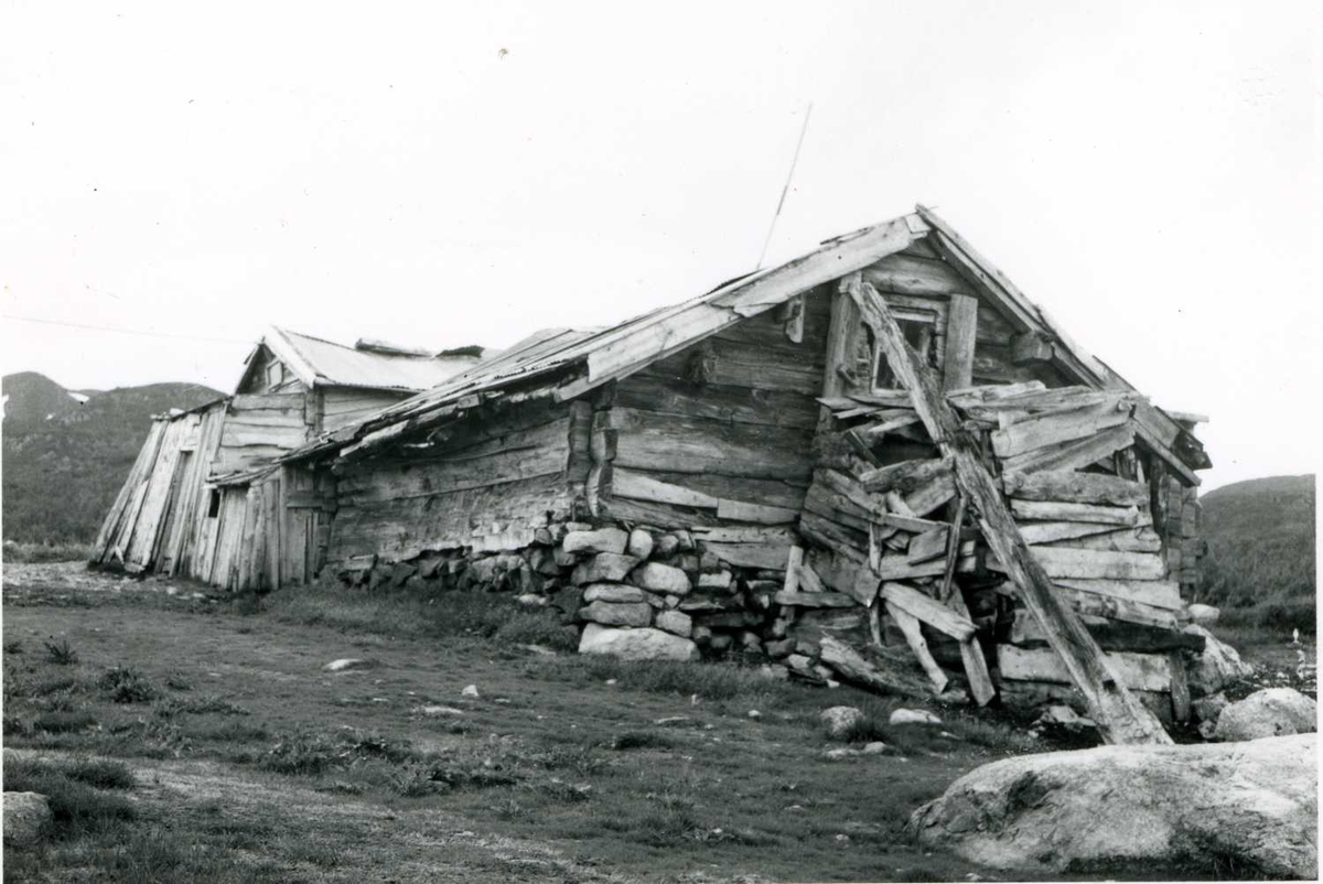 Løe, fjøs ,stall                  Juni - 58.tif