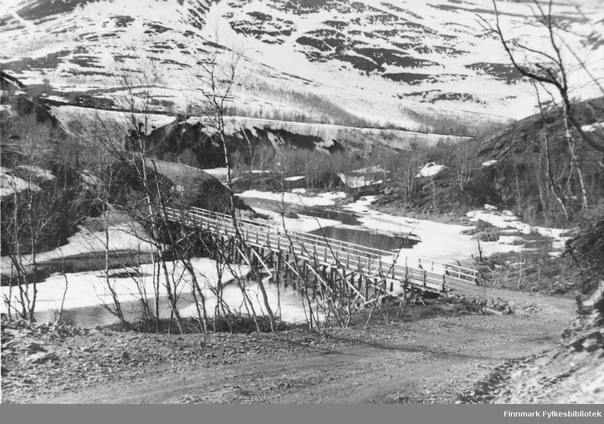 Grusvei ned til den provisoriske broen over Mattiselv, bygget for å erstatte den opprinnelige som ble knust under krigen.  Mai 1946.