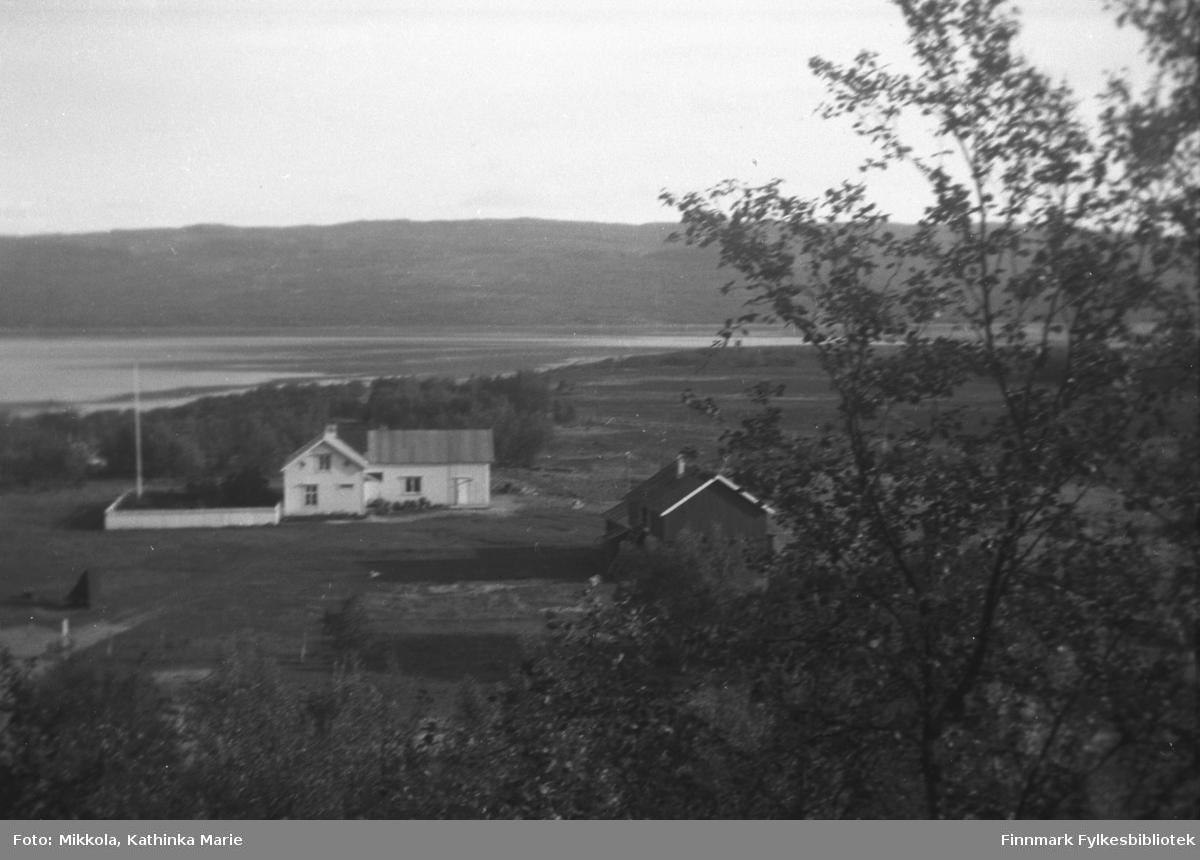 Gården Mikkelsnes i Neiden. Bildet må være tatt etter 1937, da ble det bygget en egen fjøsbygning