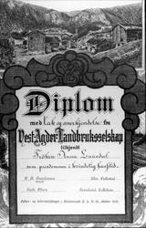 Diplom.