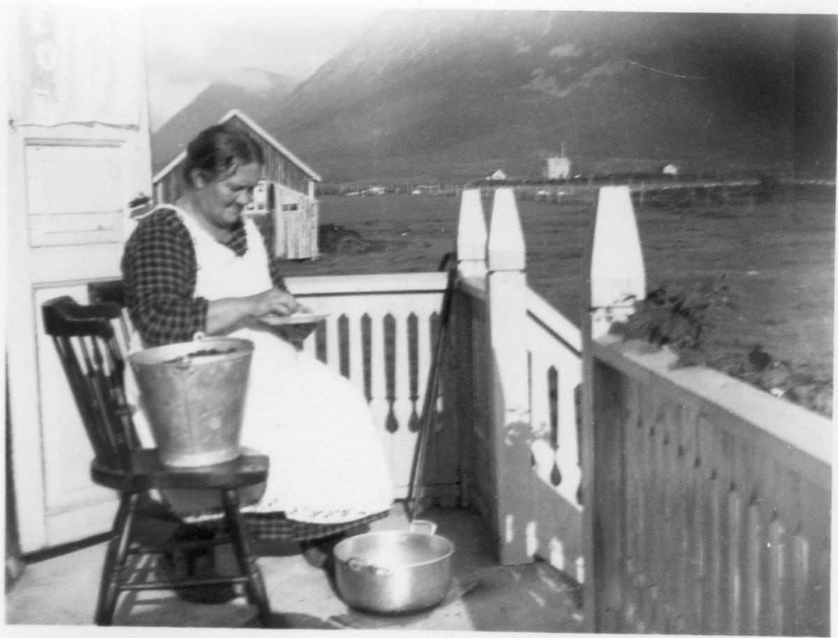 Anna Pettersen, g. Aanes, Ånes, Kjerringnes, rensker blåbær. Det gamle fjøset i bakgrunnen var flytta dit for vannhenting.