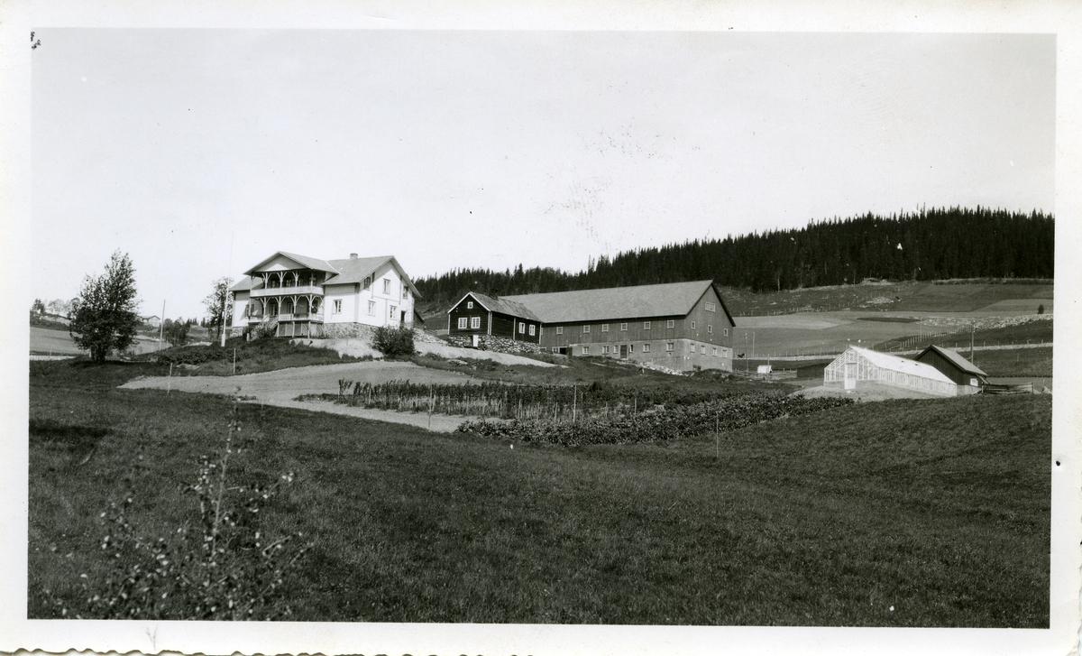 Stort hus i sveitserstil, låve,drivhus og liten tømmerbygning.Løken forsøksgård i Volbu, Øystre Slidre. Bringebærbusker og en potetåker