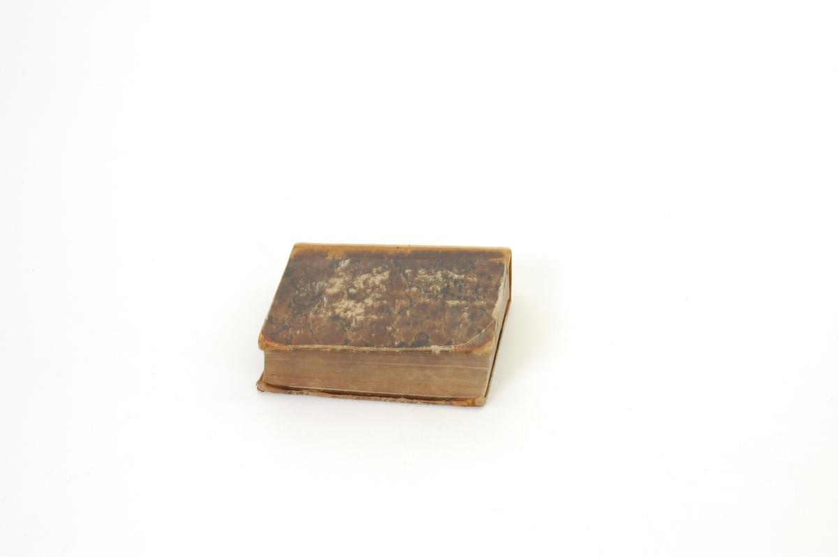 Gullskrift og -dekor i rygg