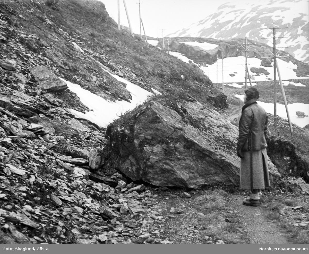 Nedrast stein på anleggsvegen i Flåmsdalen